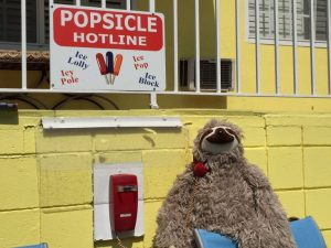 the-popsicle-hotline-how-to-make-moments-more-memorable