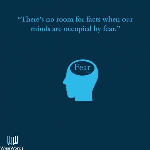 factfulness-visual-quote-2